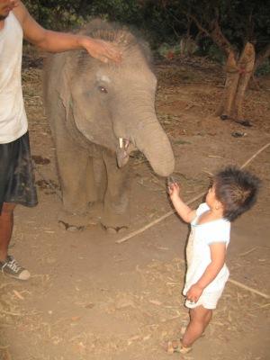 Essa é a dona do baby elefante!