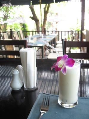 Última refeição em Chiang Mai