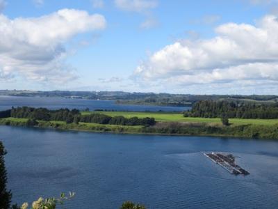 Fazendas de salmão no Lago Llanquihue