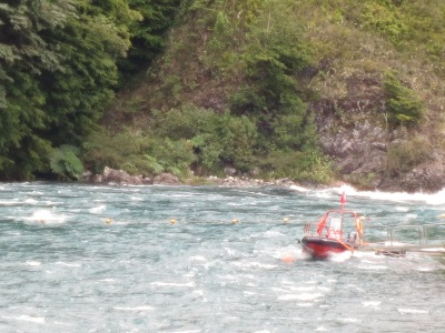 É possível fazer passeios de barco pelo Rio Petrohué