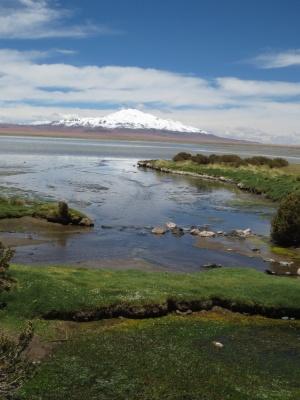 Laguna de Tara