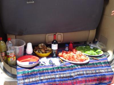Almoço - frango, tomate, palta e vinho